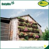 L'usine s'arrêtante de sac de jardin respectueux de l'environnement d'Onlylife élèvent le sac avec les trous divisés