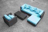 表が付いている屋外の家具の藤のソファー