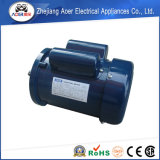Fornitore abile di fabbricazione dal motore Handmade della pompa dell'acqua di pozzo della Cina