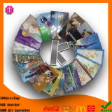Facory Promotional Resin /Tin /PVC/ Fridge Magnets