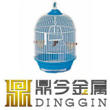 Vogel-Erscheinen-Haustier-Rahmen in China