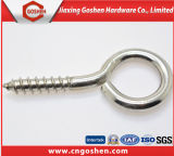 Ss304 parafuso de madeira Self Tapping Screw with Eye