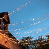 2016 luzes de Natal feericamente da cortina do Sell quente ao ar livre