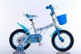 Vélo coloré de gosses avec la conduite avant de panier sur la bicyclette