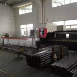 Linha de cruzamento máquina de estaca do laser da câmara de ar com laser do CNC