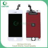 Schermo di tocco dell'affissione a cristalli liquidi degli accessori TFT del telefono mobile per il convertitore analogico/digitale di iPhone 5s