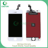 Schermo di tocco per l'affissione a cristalli liquidi di iPhone 5s