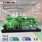 Lebendmasse-Generator des Fabrik-Preis-250kw/hölzerner Gas-Generator mit Cer, ISO