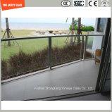 glace Tempered de 4-19mm pour la balustrade, hôtel, construction, douche, Chambre verte