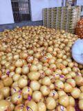 高品質のPomeloか新しいPomelo/2016穀物
