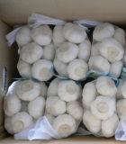 Sacchetti netti di plastica imballaggio di verdure/della frutta