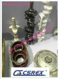 Auto peça de motor, ferro de molde/peça de aço da carcaça do motor, carcaças da peça de motor