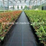 Matte des Garten-Bodendeckel-pp. Weed