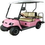 4 автомобиля гольфа электрических автомобиля персоны миниых