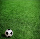 Soccer를 위한 세륨 Certificate Artificial Grass