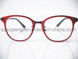 Frame ótico dos Eyeglasses baratos modelo relativos à promoção de Aluminumplastic
