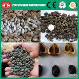 semi del Jatropha 300kg/H che sgranano, macchinario di separazione e di sbucciatura