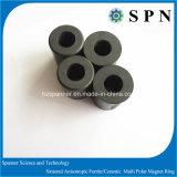 Anello sinterizzato permanente del magnete del ferrito per il motore facente un passo