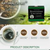 최고 체중을 줄이는 커피 도매 자연적인 체중 감소 슬림패스트 규정식 뚱뚱한 흡진기 초본 건강한 제품