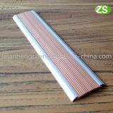 De Trede die van het Carborundum van het Aluminium van het metaal voor de Bescherming van de Rand van de Trede besnuffelen