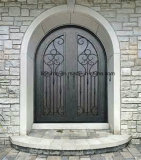 Portas de entrada novas superiores do dobro do ferro feito do projeto de Eyebrown