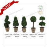 24cm PE 절묘한 인공적인 장식 정원 나무 홈 훈장