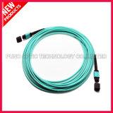 100g 24 Cores Om3 MTP Câbles mâles à fibre optique