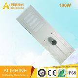 Indicatore luminoso di via solare della lampada esterna ad alta potenza di Graden 5W-100W