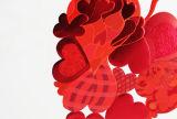 Фольга фольги переноса давления жары штемпелюя свободно конструирует свободно цвет