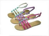 Chaussures de Silpper de fille (KB-254)