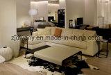 Il sofà del salone del sofà del tessuto ha impostato (D-72-F+H)
