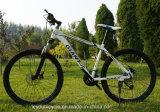 산악 자전거 고품질 판매를 위한 강철 산 자전거
