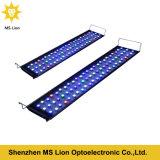 관제사를 가진 Dimmable LED 수족관 빛, 수족관 암초 LED 빛