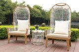 Mesa ao ar livre e cadeira para conjunto de móveis de jardim (HCQ195)