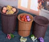 Cestino ecologico della visualizzazione di memoria del supermercato per l'ortaggio da frutto