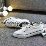 標準的な加硫させたズック靴、低価格(FF1027-02)の男女兼用学生の偶然のゴム製靴