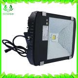 Indicatore luminoso di inondazione esterno del sensore di movimento della garanzia di IP65 3years 30W PIR LED