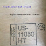 Madeira compensada do vidoeiro com classe 2.7-21mm do tratamento térmico C/D