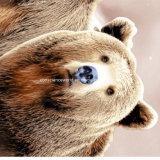 o urso Pigment&Disperse de 100%Polyester Brown imprimiu a tela para o jogo do fundamento