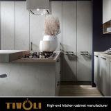 Armadi da cucina neri piacevoli di rivestimento e di disegno Tivo-D017h