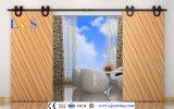 Deslizamiento Barn Door System Negro puerta corrediza de hardware (LS-SDU 05)