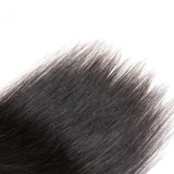 Cabelo chinês chinês garantido do Virgin do cabelo humano da chegada 2017 qualidade nova