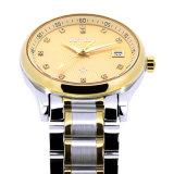 Het superieure Mechanische In het groot Automatische waterdichte Horloge van het Horloge