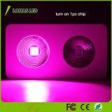 고성능 가득 차있는 스펙트럼 옥수수 속 LED는 온실 600W 900W 1200W 1800W를 위해 가볍게 증가한다