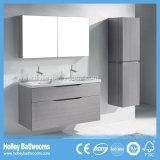 حديثة [إيوروبن] غرفة حمّام تفاهة مع مرآة خزانة وجانب وحدة ([بف361د])
