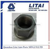 Bullone della rotella di BPW M22*1.5/M22*2*118mm con qualità ad alta resistenza
