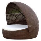 Daybed de mentira de mimbre de la base del salón de Sunbed del jardín de la rota de la cortina oval al aire libre de los muebles