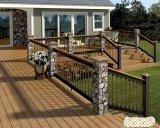 Villa americana di stile con la Camera prefabbricata del giardino