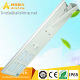 Solarlicht-Hersteller-Verkauf wird für 60W alle in einer Solarlampe der straßen-LED mit Bridgelux LED Chip