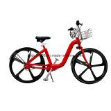 Kein Station-Anteil-Fahrrad/attraktives preiswertes allgemeines Fahrrad